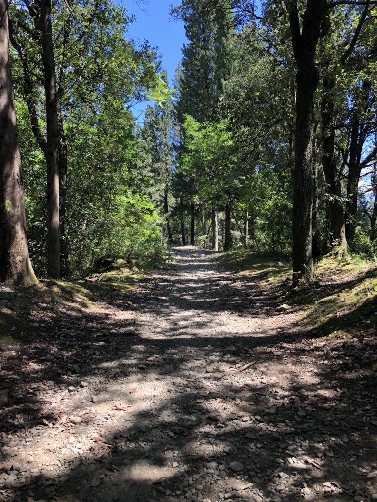 Florence Hills Hiking