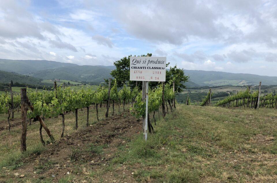 Chianti Classico tuscany