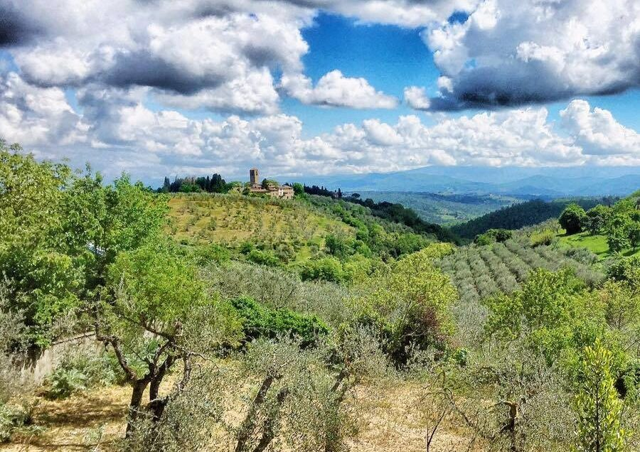 Etruscans in Florence & Tuscany