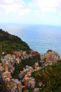 Terraces view of Cinque Terre