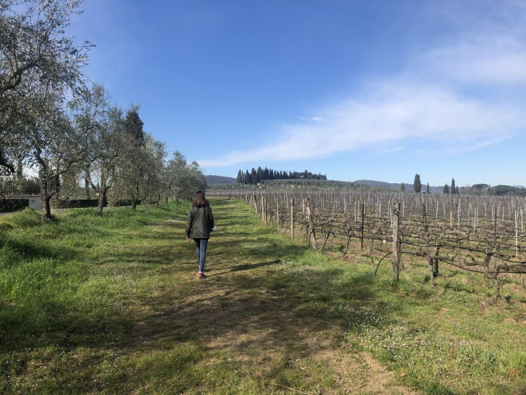 hiking in Florence